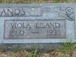Viola Veatris <i>Eiland</i> Husbands