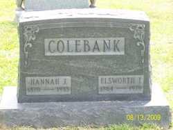Hannah Jane <i>Stewart</i> Colebank