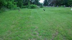 Wyandotte Cemetery
