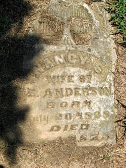 Nancy S. Anderson