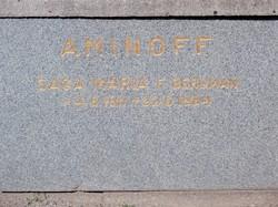 Saga Maria <i>Bergman</i> Aminoff