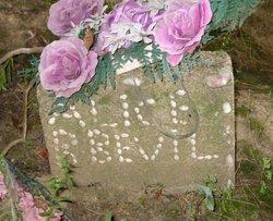 Alice Bell <i>Kennon</i> Bevil