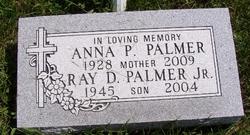 Ray D Palmer, Jr