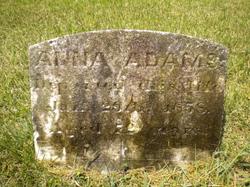 Anna <i>Dier</i> Adams