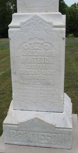 Otto Julius Brinteson