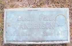 Bengt Peter Anderson