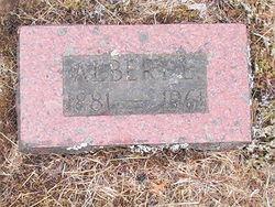 Albert L Allen