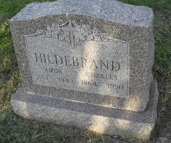 Amor Ella <i>Stribling</i> Hildebrand