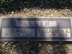 Elizabeth Ann Allen