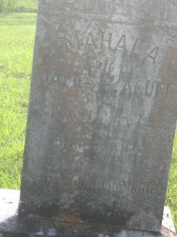 Mahala Martha <i>Harrell</i> Acuff
