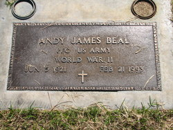 Andy James Beal
