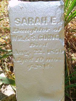 Sarah E Goings