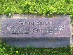 Agnes G Anderson