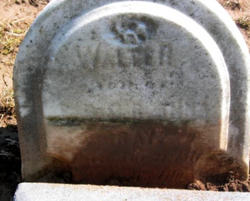 Walter Gray