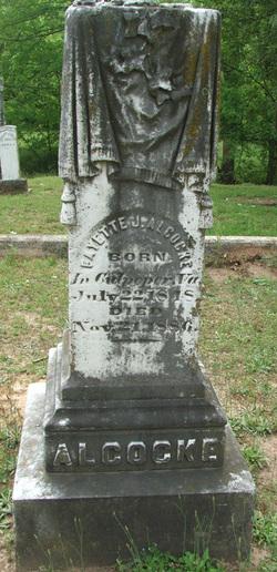 Fayette J. Alcocke