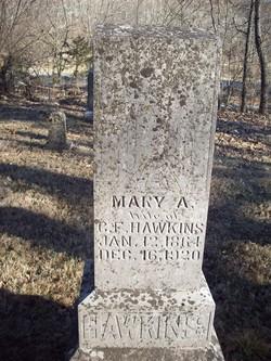 Mary Ann <i>Washam</i> Hawkins