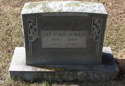 Lilly <i>Bonds</i> Scanlin