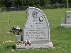 Dylan Anthony Dillie Carroll