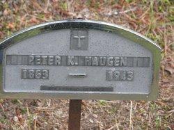 Peter K Haugen