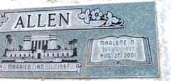 Marlene N Allen