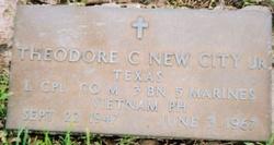 Theodore Carroll Ted NewCity, Jr