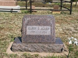 Harry E. Agard