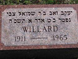Willard Feinstein