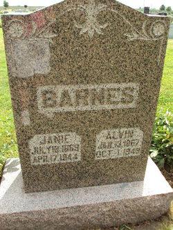Alvin Barnes