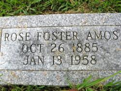 Rose <i>Foster</i> Amos