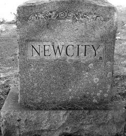Albert Henry Newcity