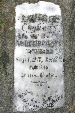 Willie E Addenbrooke