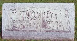 Harrison Morton Twombly
