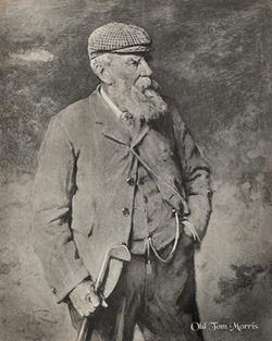 Tom Old Tom Morris