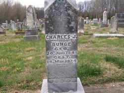 Karl Heinrich Joachim Charles Bunge
