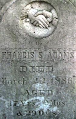 Francis S Adams