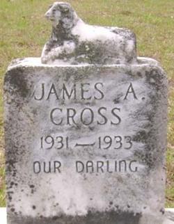 James A. Cross