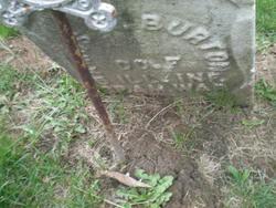 Amos W Burton