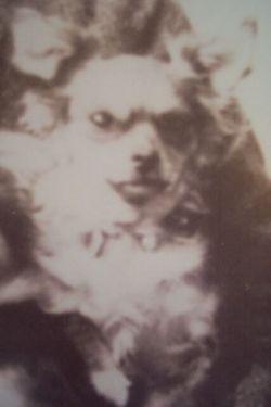 Mimi Wharton