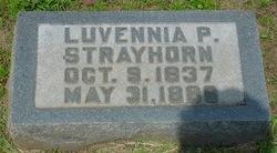 Luvennia P <i>Strayhorn</i> Scott