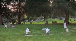 Robertsville Cemetery AEC #30