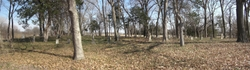 Mount Carmel Cemetery (Old Hampton)
