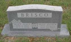 Hugh Andrew Brisco