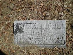 Lois Marjorie Adams