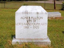 Agnes Jane <i>Fulton</i> Amis