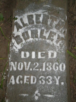 Albert R Burley