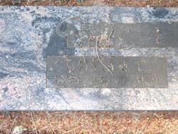 William Clarence Eitel