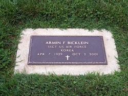Armin F Bicklein