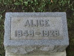 Alice Stewart