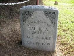 Sallie Ann <i>Johnson</i> Bailey