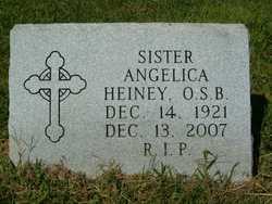 Sr Angelica Heiney